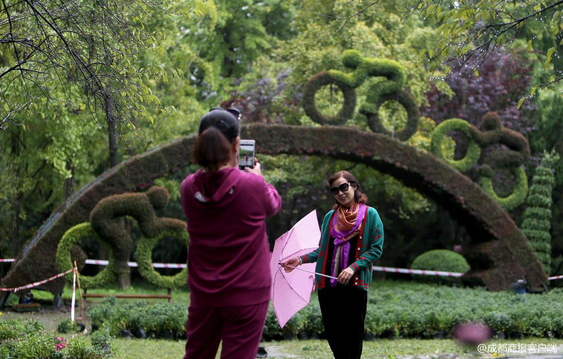 人民公园的菊花还未开,孃孃们拍照的丝巾却换了