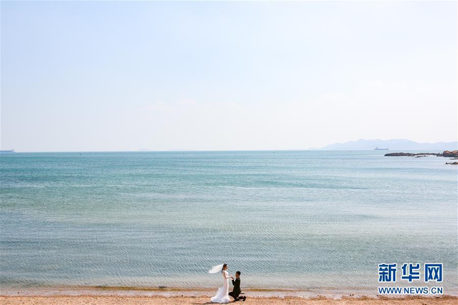 碧海蓝天,红瓦绿树的青岛吸引众多情侣甜蜜留影,美丽的海滨城市洋溢着