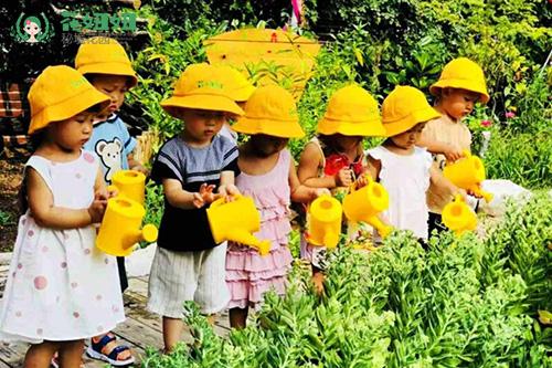 """在国外,""""森林幼儿园""""这个名字非常响亮,他们的孩子可以每天在森林"""