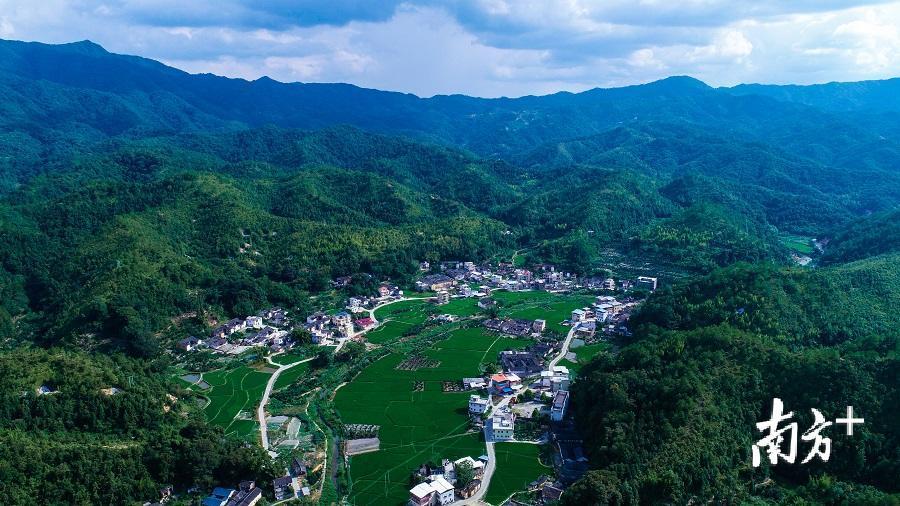 """大埔青溪镇入围2018年""""广东省森林小镇""""公示名单"""