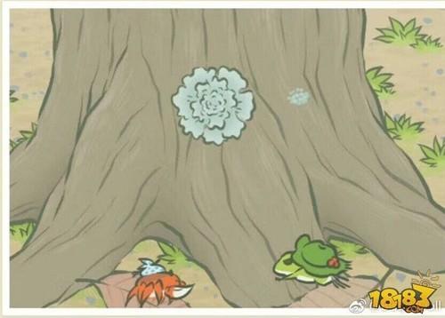 旅行青蛙相册大全 明信片照片寄语汇总