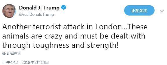 特朗普谈男子开车撞英国议会大厦:这些动物真疯狂