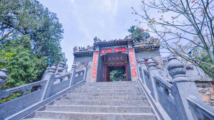 四月,春节,嵩山石一个鸟语花香,蝴蝶满山飞的季节.