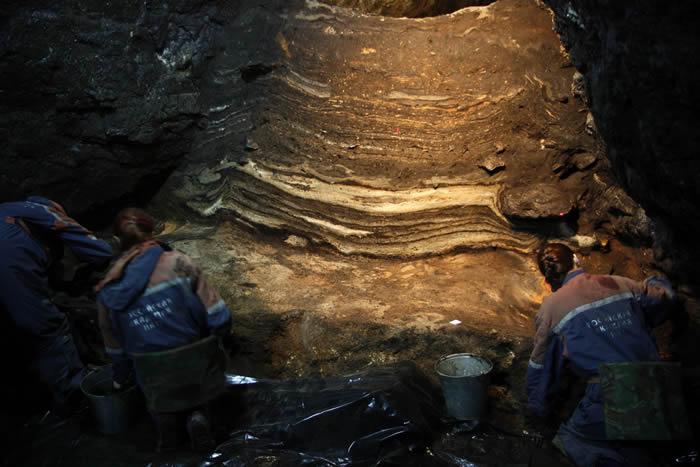 俄罗斯西伯利亚的丹尼索瓦洞穴中发现5万年历史长毛象