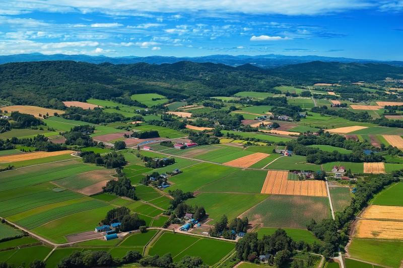 以乡村振兴战略推进农业农村现代化