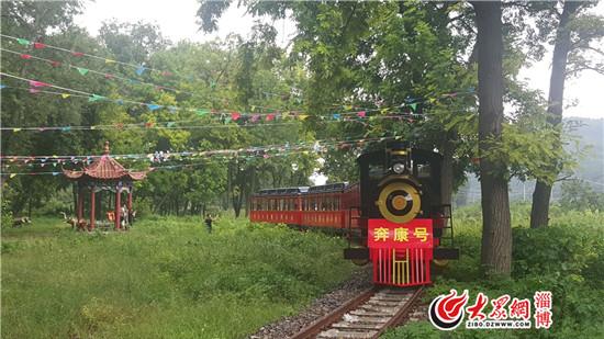 据了解,西石村地处淄川东部山区,距离淄川城区50多公里,是峨庄国家