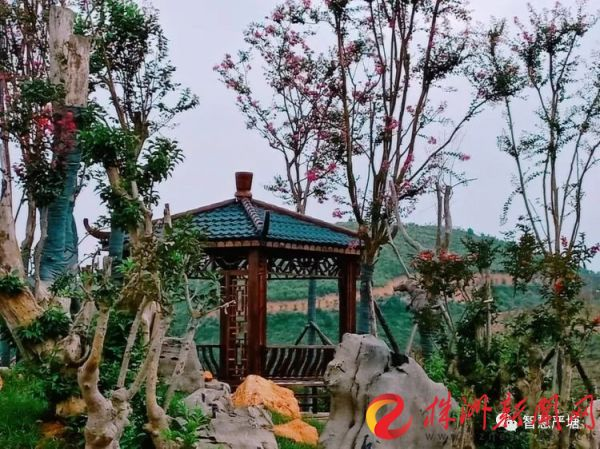 """""""中国花湖谷""""景区9月10日开园 茶陵万樟园林等您来赏图片"""