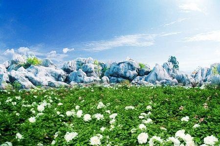 丫山花海石林风景区