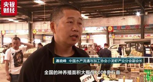 """小龙虾价格再次起""""飞"""" 部分涨幅达60%!"""