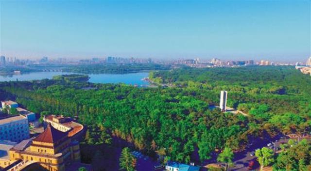 让森林拥抱城市,创建国家生态园林城市,正在成为东营城市建设的奋斗