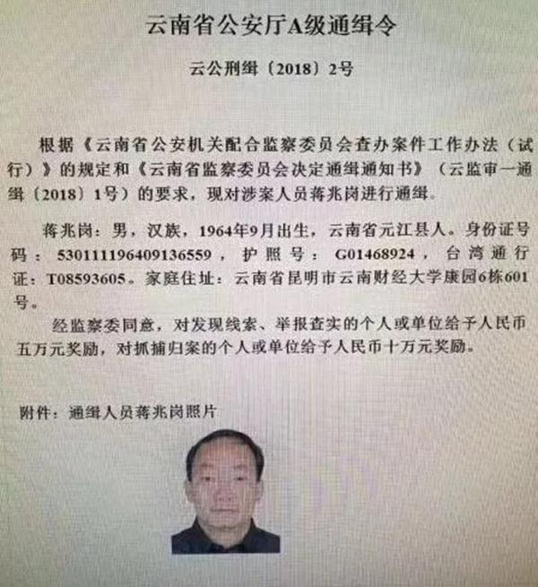云南美女厅官获刑十年半:被指是领导情人