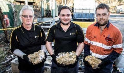 """金价萎靡之际,澳大利亚又发现了""""世界大金矿"""""""
