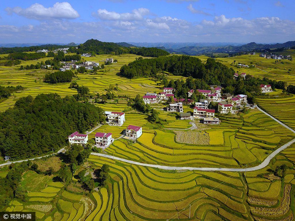贵州惠水风景图