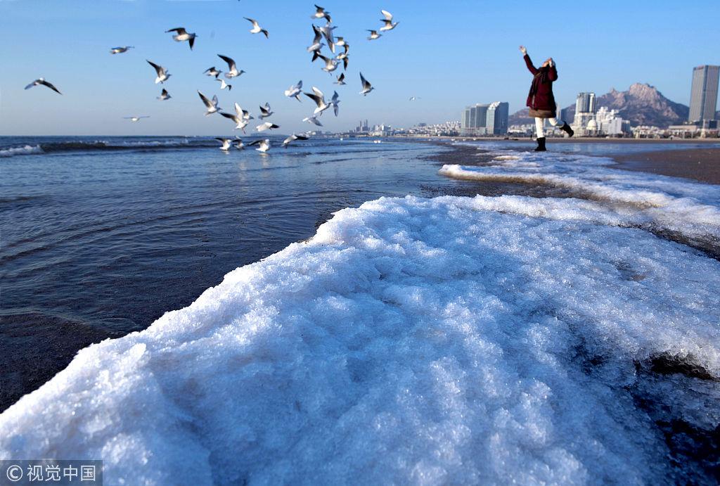 山东青岛遇连续降温天气 海面出现结冰现象