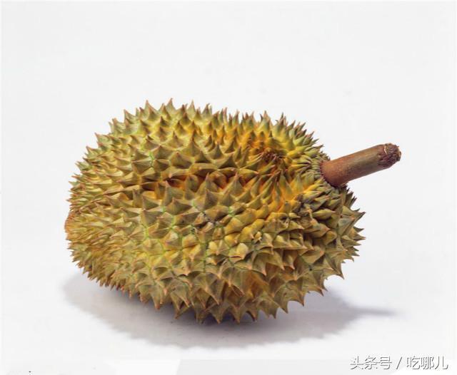 西方国家无法理解的9种亚洲美食 中国3种美食上榜