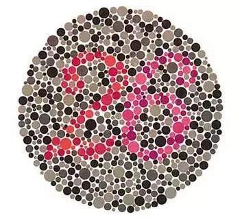 考驾照的色盲测试图 能否看清里面的图案和数