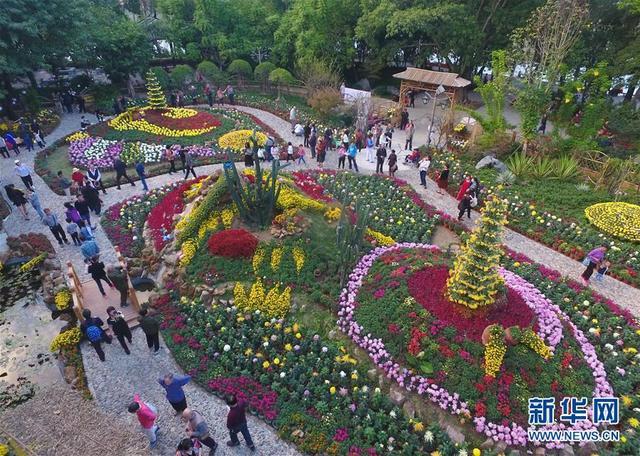 """福州西湖公园菊花园由精品菊花组成的福州""""三山两塔""""景观(11月5日无图片"""