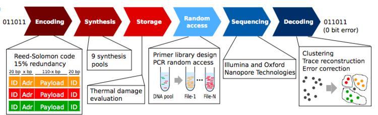 微软研究用DNA做硬盘,成功存储200M数据