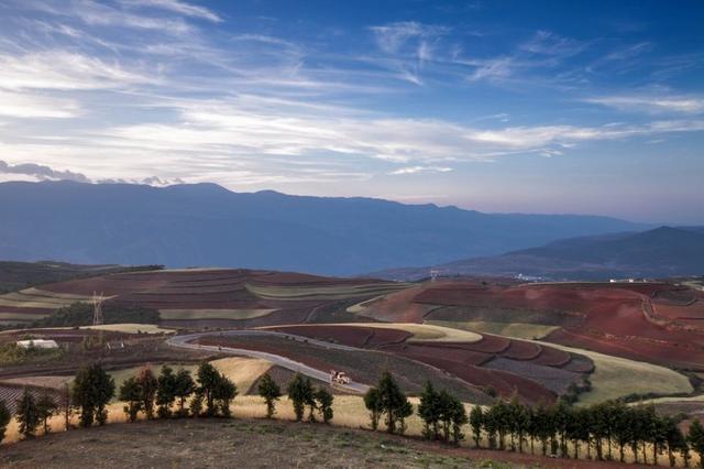 五月香黄色网_五月 红土地呈现四种颜色:红色的土地,金黄色的小麦,青稞,绿色的