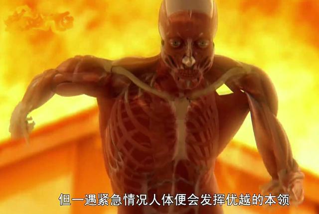 人类身体对于体温冷热的极限,人体在各种温度下的表现 - 老泉 - 把酒临风的博客