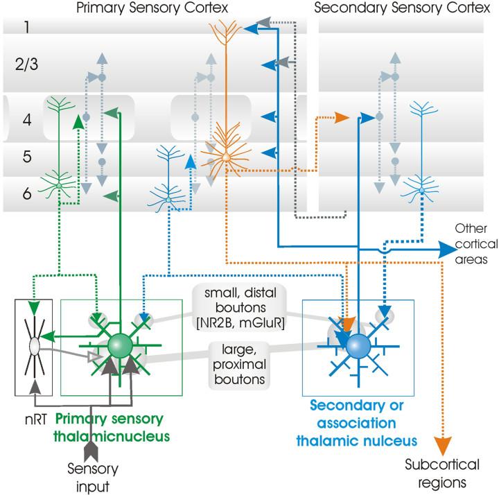 科学小制作电路